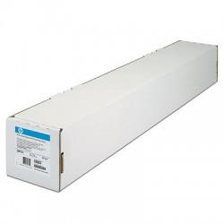 HP - Q6627B Mate formato grande