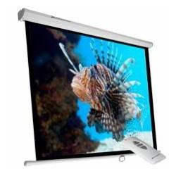 "Phoenix Technologies - Pantalla-350elec 197"" 1:1 Blanco pantalla de proyección"