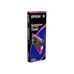 Epson - Cartucho T544300 magenta
