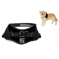 ACTIVEON - ACM09DV Arnés para perros accesorio para cámara de deportes de acción