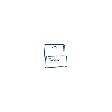 Epson - 110ml Light Cyan Stylus Pro 4880/4800