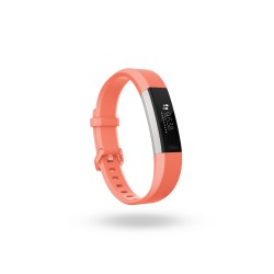 Fitbit - Alta HR Wristband activity tracker OLED Alámbrico/Inalámbrico Acero inoxidable - 22108582