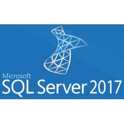 Microsoft - SQL Server 2017 Standard - 22137803