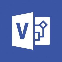 Microsoft - Visio Professional 2019 1 licencia(s) Plurilingüe