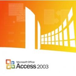 Microsoft - Access 2003, x32, GOV, SA, 1u, OLP-NL - 11145117