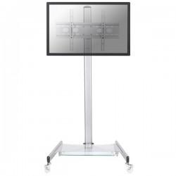 Newstar - Soporte de suelo móvil para TV - PLASMA-M1600