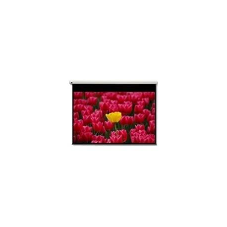 """Optoma - Pantalla 16:9 2656 x 1494mm 120"""" 16:9 pantalla de proyección"""