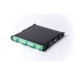 Brother - BU-300CL correa para impresora 50000 páginas