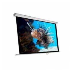 "Phoenix Technologies - Pantalla 300m pantalla de proyección 4,29 m (169"") 1:1"
