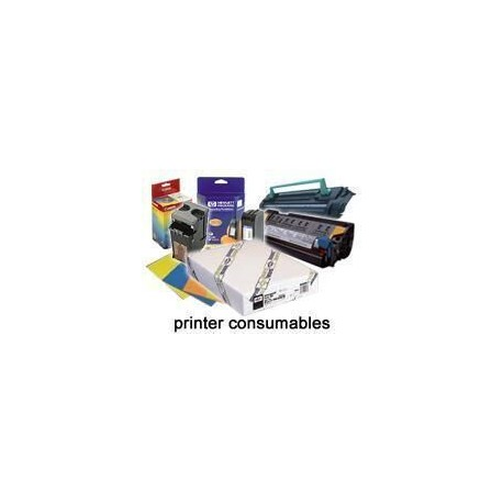 """Epson - Rollo de Premium Glossy Photo Paper, 24"""" x 30,5 m, 260 g/m²"""