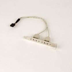 iggual - IGG311691 Interno USB 2.0 tarjeta y adaptador de interfaz
