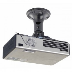 Newstar - BEAMER-C50 Techo Negro montaje para projector