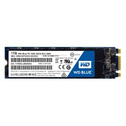 Western Digital - Blue PC SSD 1TB 1000GB M.2 M.2