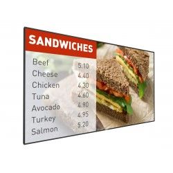 Philips - Signage Solutions Pantalla P-Line 42BDL5057P/00