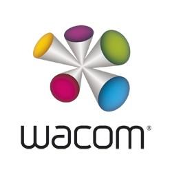 Wacom - ACK-20005 Accesorio para pluma estilográfica Blanco 5 pieza(s)