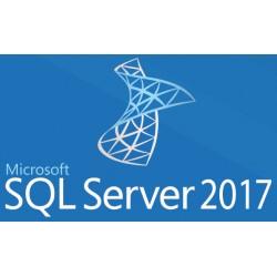 Microsoft - SQL Server 2017 Standard - 22137802