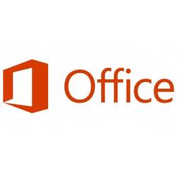 Microsoft - Office Professional 2019 1 licencia(s) Plurilingüe