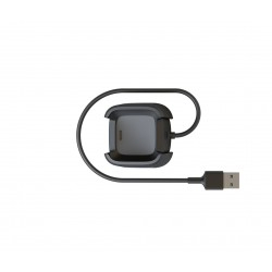 Fitbit - FB166RCC accesorio de relojes inteligentes Cable de carga Negro
