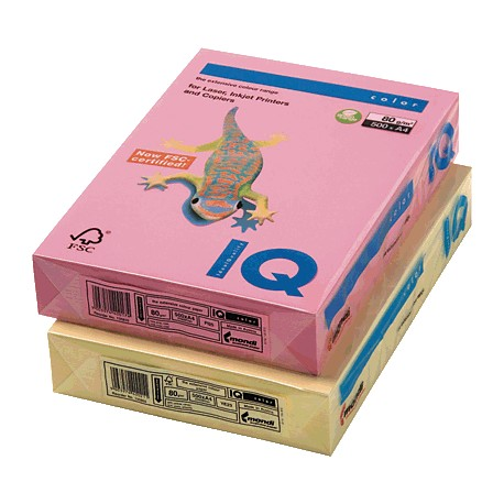 IQ - Papel multifunción color 500h 80g A4 Vainilla